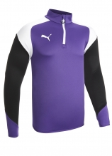 buy Puma Esito 1/4 Zip Training Top