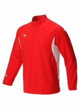 buy Puma 1/4 Zip Golf Pullover