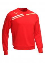 buy Puma King Sweater
