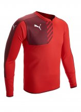 buy Puma Mestre Performance Sweatshirt